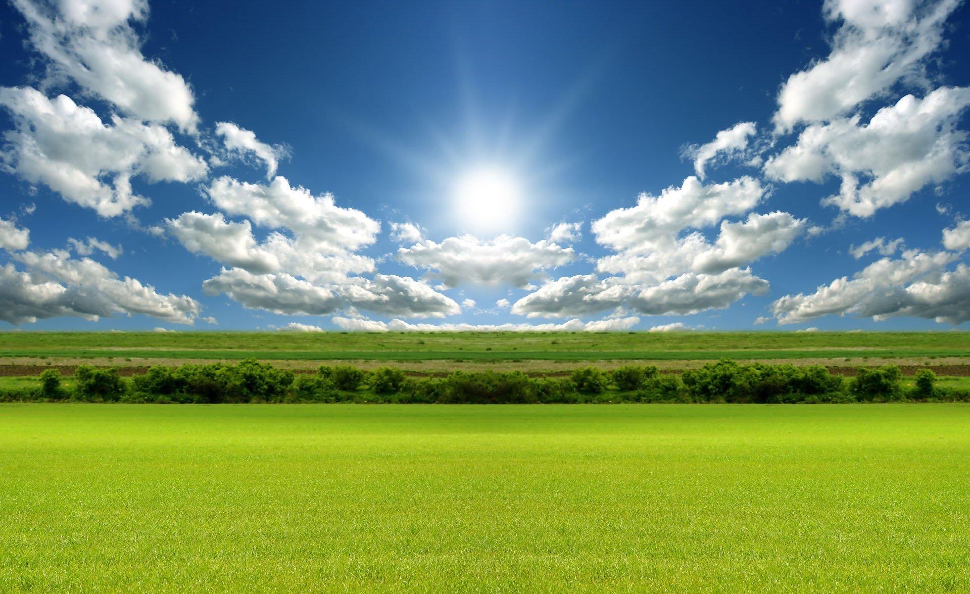 sun nature image