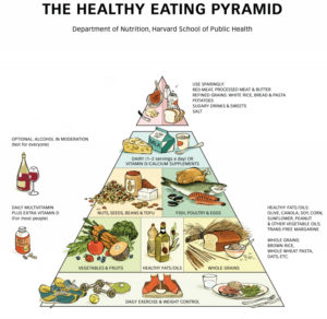 harvard_healthy_eating_pyramid