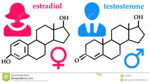 hormones-chemical-formula-female-male-hormone-30378721